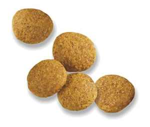 dog food for sensitive stomachs