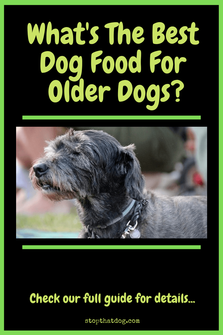 Looking to buy the best dog food for older dogs? If so, our guide highlights the best options on the market and reveals the top 5 based on buyer reviews.
