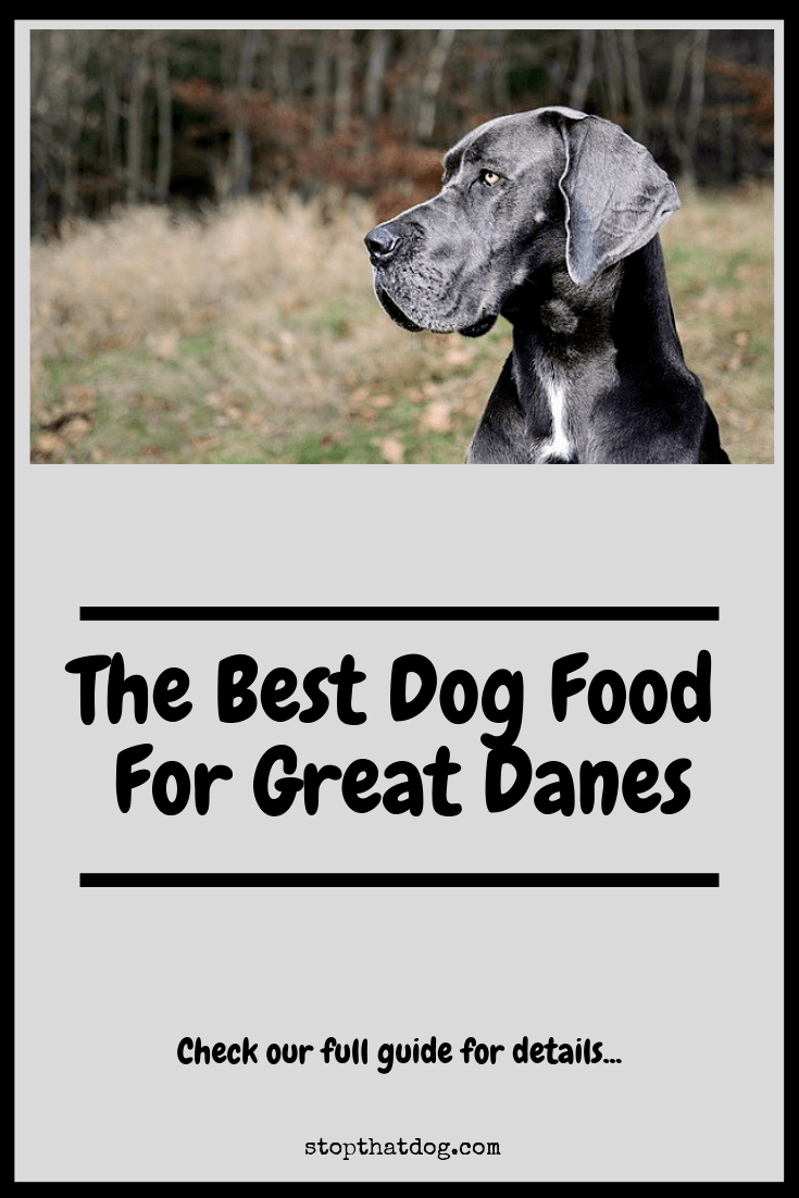 Looking to find the best dog food for Great Danes? If so, our guide reveals the best options on the market and highlights the top 5 based on buyer reviews.