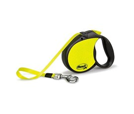 What's The Best Retractable Dog Leash? Our Favorite Picks 6
