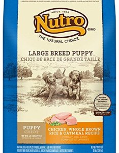 What's The Best Dog Food For Puppies? Our Ultimate Guide 20