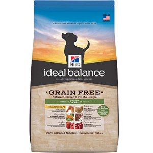 What's The Best Grain Free Dog Food? 20