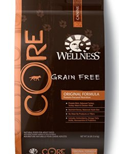 What's The Best Grain Free Dog Food? 1