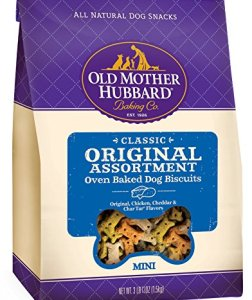 What Are The Best Dog Treats? Your Ultimate Guide 2