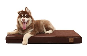 What's The Best Dog Bed For Large Dogs? Our Ultimate Guide 19
