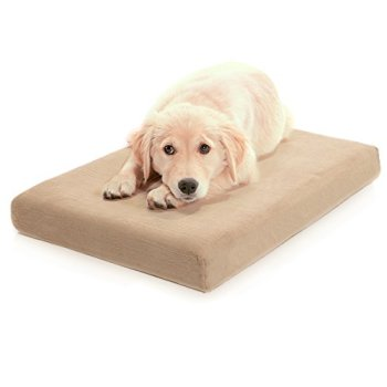 What's The Best Dog Bed For Large Dogs? Our Ultimate Guide 13