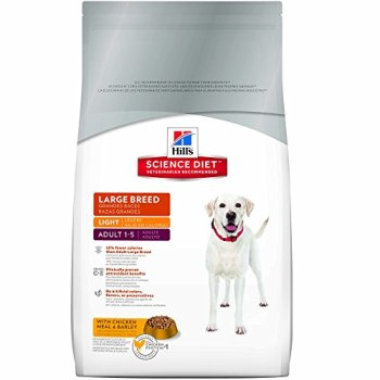 What's The Best Dog Food For Great Danes? 8
