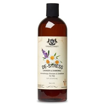 What's The Best Dog Shampoo For Odor? 7