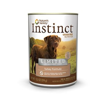 What's The Best Dog Food For Sensitive Stomachs? 16