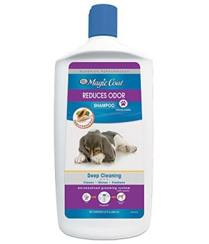 What's The Best Dog Shampoo For Odor? 2