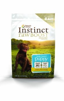 What's The Best Dog Food For Large Breeds? Our Top Picks 25