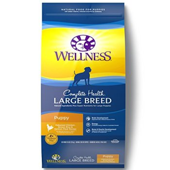 What's The Best Dog Food For Large Breeds? Our Top Picks 21