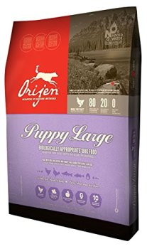 What's The Best Dog Food For Large Breeds? Our Top Picks 22