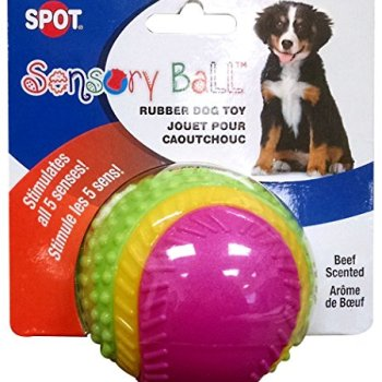 What Are The Best Interactive Dog Toys? Our Complete Guide 13