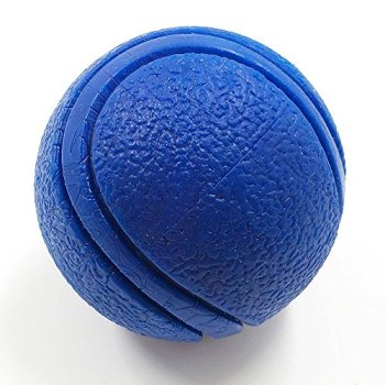 What Are The Best Indestructible Dog Toys For Aggressive Chewers? 3