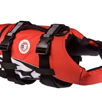What Are The Best Life Jackets For Dogs? 1