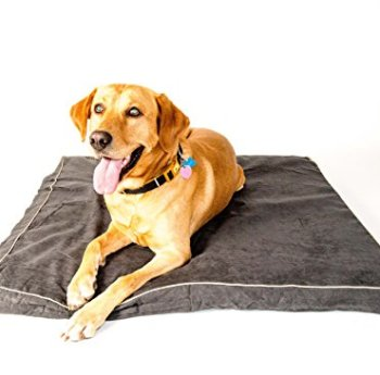 What's The Best Orthopedic Memory Foam Dog Bed? Our Complete Guide 12
