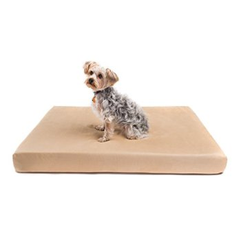 What's The Best Orthopedic Memory Foam Dog Bed? Our Complete Guide 9