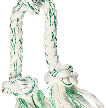 What Are The Best Dog Rope Toys? 2