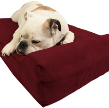 What's The Best Orthopedic Memory Foam Dog Bed? Our Complete Guide 2