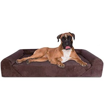 What's The Best Orthopedic Memory Foam Dog Bed? Our Complete Guide 14
