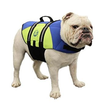 What Are The Best Life Jackets For Dogs? 5