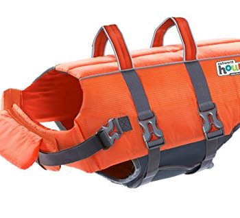 What Are The Best Life Jackets For Dogs? 2