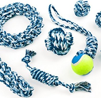 What Are The Best Dog Rope Toys? 9