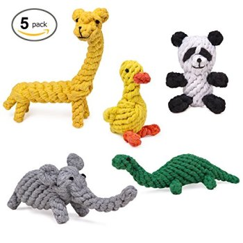What Are The Best Dog Rope Toys? 12