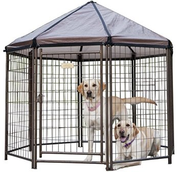 What's The Best Dog Kennel? Our Top Picks 2