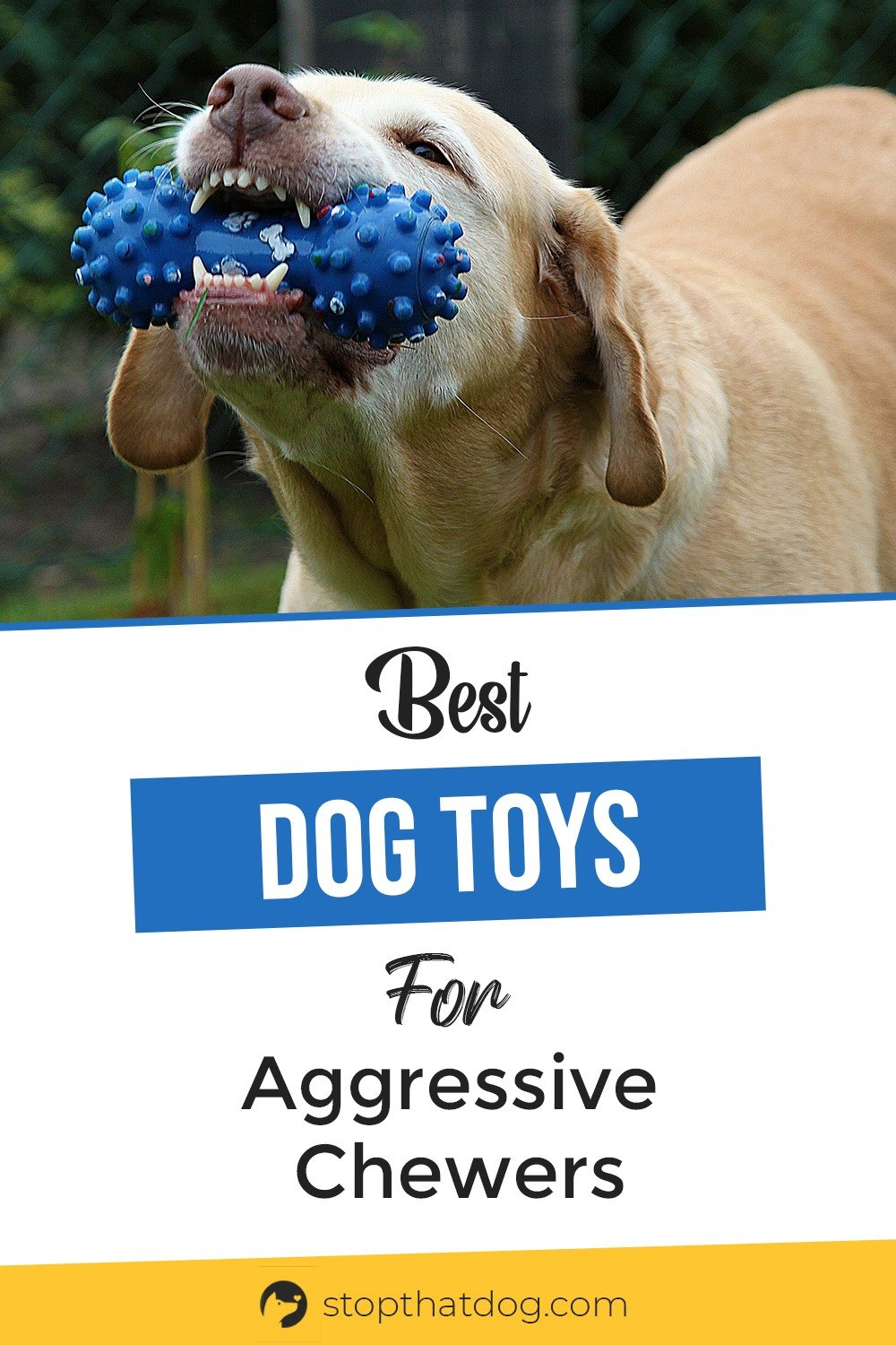 Looking for the best tough toys for aggressive chewers? If so, our guide reveals all the top options that\'ll withstand a strong chewer without any problem.