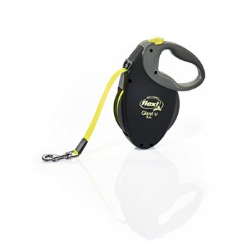 What's The Best Retractable Dog Leash? Our Favorite Picks 3