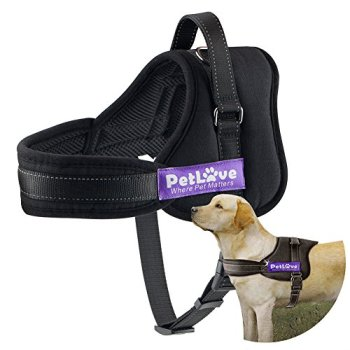 What Are The Best Leashes And Harnesses For Dogs That Pull? 18
