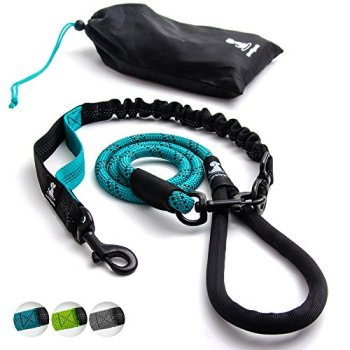 What Are The Best Leashes And Harnesses For Dogs That Pull? 23