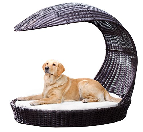 The Best Outdoor Dog Beds Our Top Picks Stop That Dog