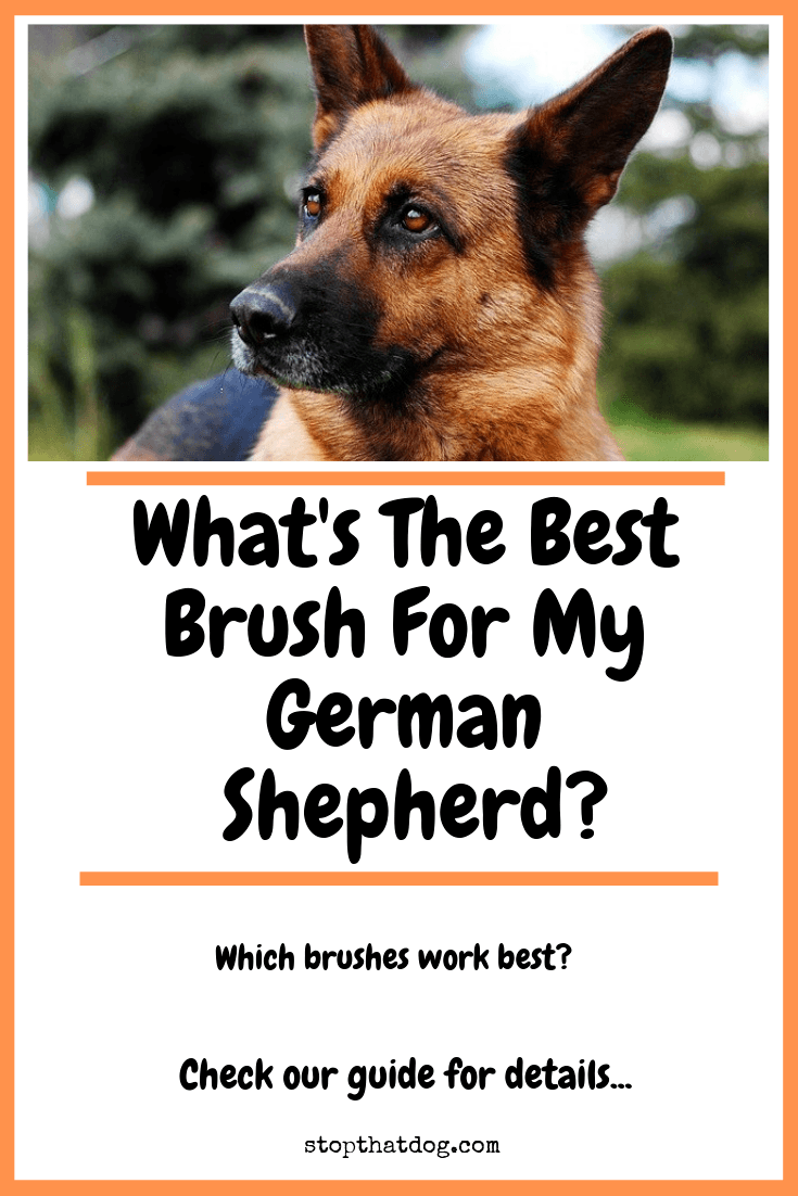 Looking for the best brushes for a German Shepherd? If so, our guide reveals the key brushes you\'ll need to groom and maintain your dog\'s coat.