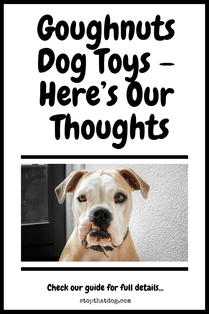 Curious to learn more about Goughnuts dog toys? If so, our guide reveals our thoughts on the toys and evaluates them based on real buyer feedback.