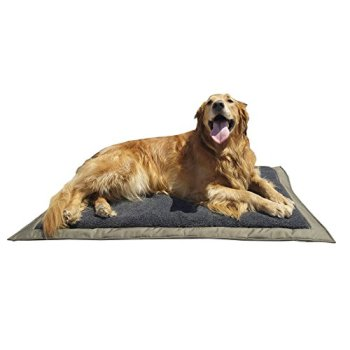 What's The Best Traveling Dog Bed? Our In-Depth Guide 10
