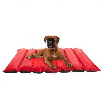 What's The Best Traveling Dog Bed? Our In-Depth Guide 16