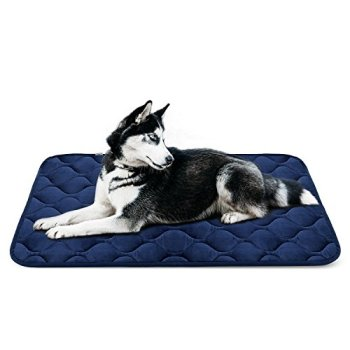 What's The Best Traveling Dog Bed? Our In-Depth Guide 9