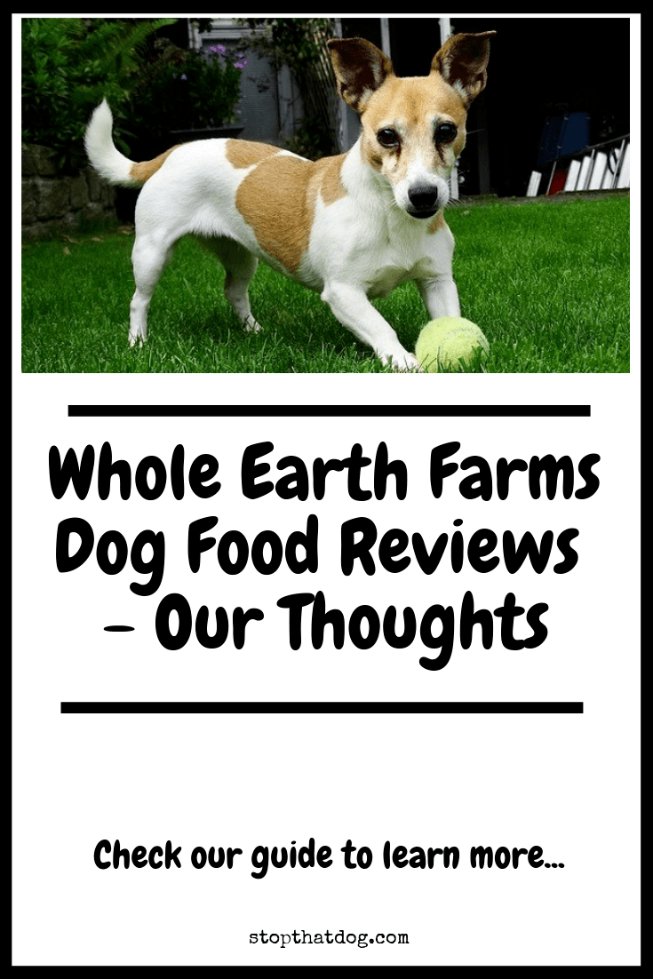 Curious to learn more about Whole Earth Farms dog food? If so, our guide reveals the key facts you\'ll need to know and highlights real buyer feedback.