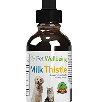 What's The Best Milk Thistle Supplement For Dogs? Your Ultimate Guide 4