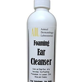 What's The Best Way To Clean My Dog's Ears? Your Detailed Guide 8
