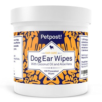 What's The Best Way To Clean My Dog's Ears? Your Detailed Guide 17