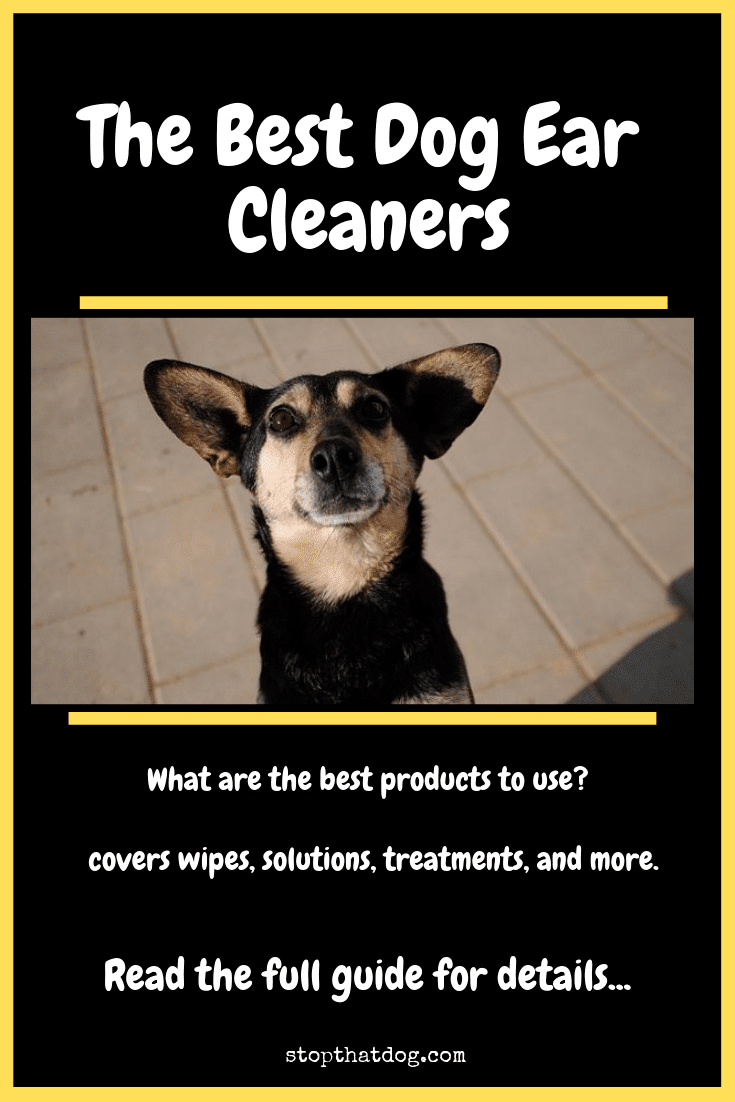 Looking for the best dog ear cleaners? Our guide reveals the top wipes, treatments, and solutions. Discover the best way to clean your dog\'s ears.