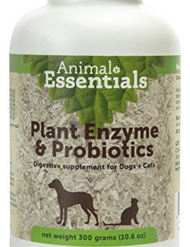 What Are The Best Probiotics For Dogs? Your Essential Guide 21
