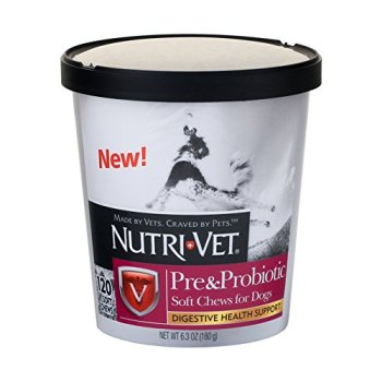 What Are The Best Probiotics For Dogs? Your Essential Guide 18