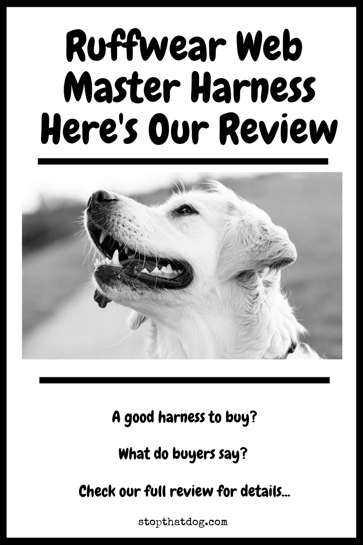 Thinking of buying the Ruffwear Webmaster harness? If so, our guide highlights the key features and reveals what real buyers are saying.