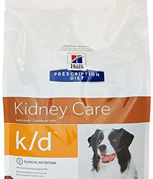 What's The Best Low Protein Dog Food? 1