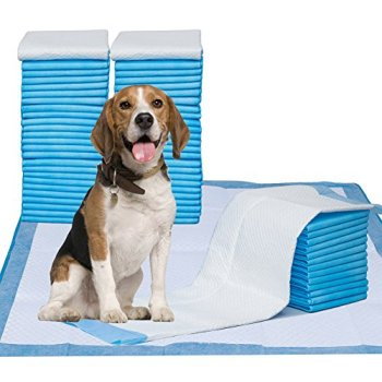 What's The Best Puppy Pee & Potty Training Pad? (+ Floor Trays & Holders!) 11